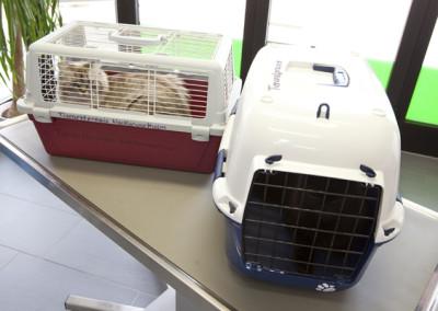 Katzentransportkoerbe zum Ausleihen