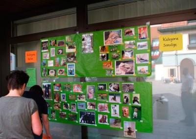 Sommerfest_2012-0176