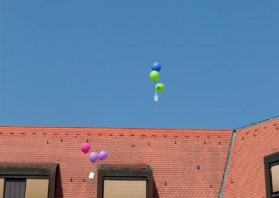 Sommerfest-2010-(37)