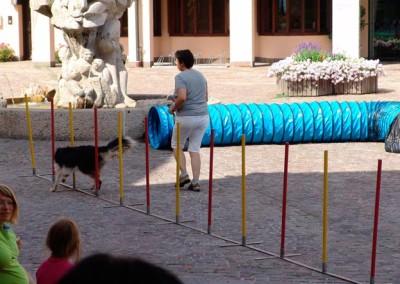 Sommerfest-2010-(42)