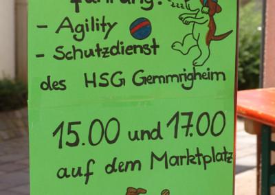 Sommerfest-2010-(6)