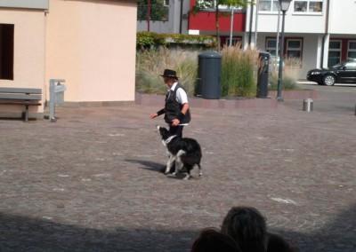 Sommerfest-2011-(12b)