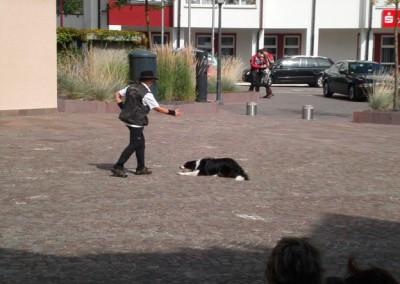 Sommerfest-2011-(12h)