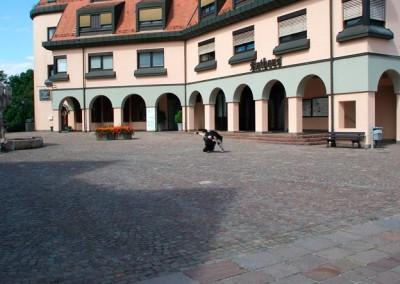 Sommerfest-2011-(3)