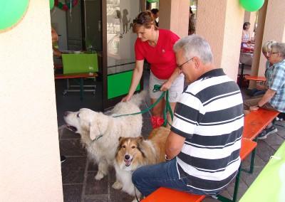 Sommerfest Tierarztpraxis Neckarwestheim 21
