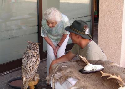Tierarzt Neckarwestheim 88