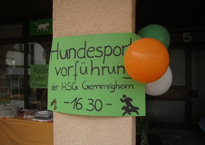 Sommerfest_2014-0110