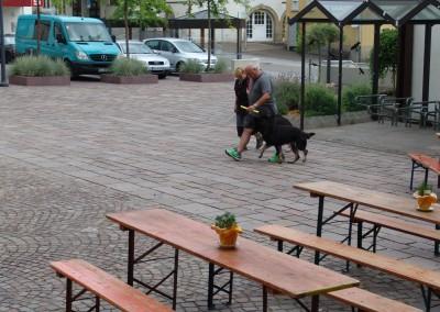 Sommerfest_2014-0254