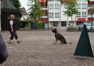 Sommerfest_2014-0278
