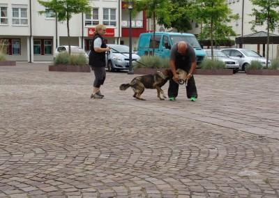Sommerfest_2014-0296