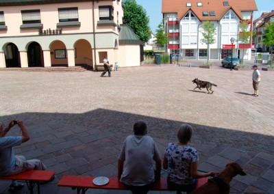 Sommerfest-2010-(29)