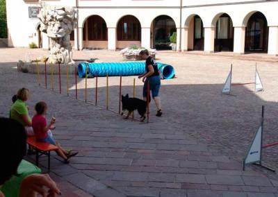 Sommerfest-2010-(38)