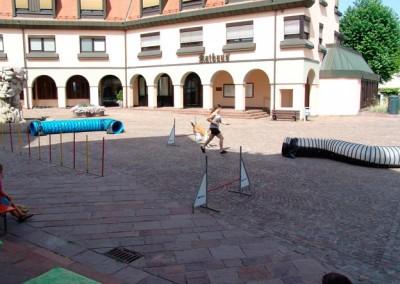 Sommerfest-2010-(41)