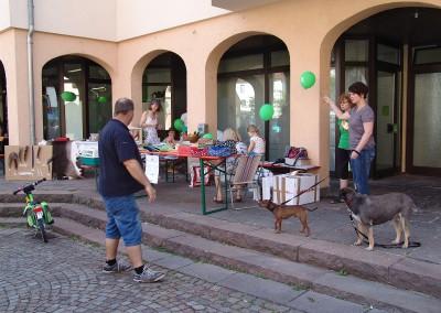 Tierarzt-Praxis Neckarwestheim 87